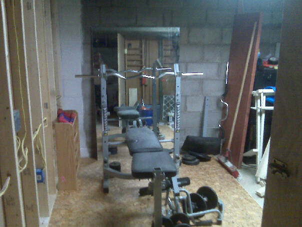 building a home gym version 1 0 tom sylvester